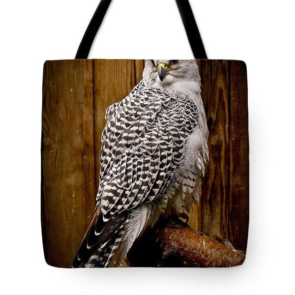Gyrfalcon Perched Tote Bag by Steve McKinzie