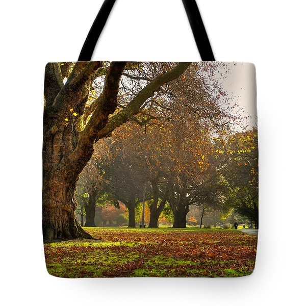 Hagley In Autumn Tote Bag