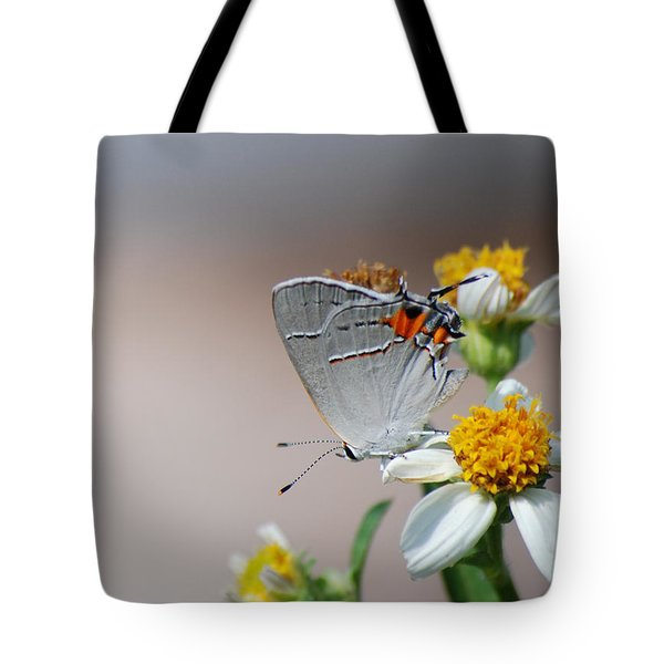 Hairstreak Tote Bag