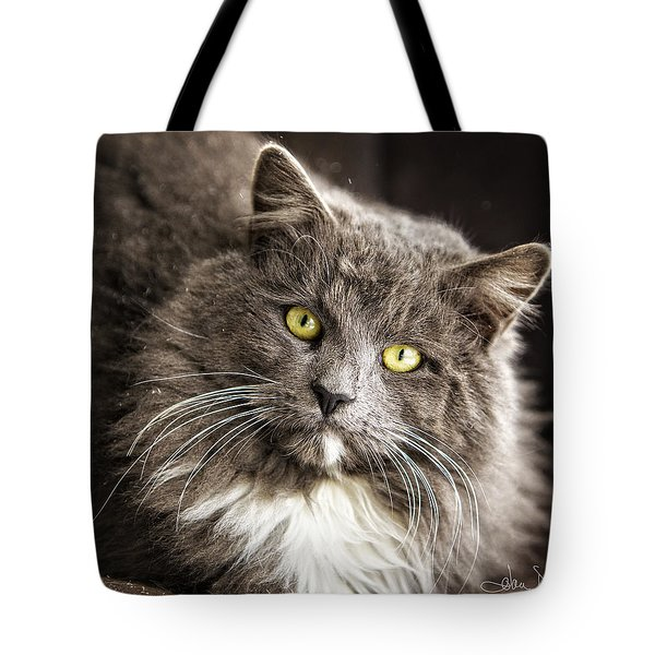 Hairy Ears Tote Bag by Joan Davis