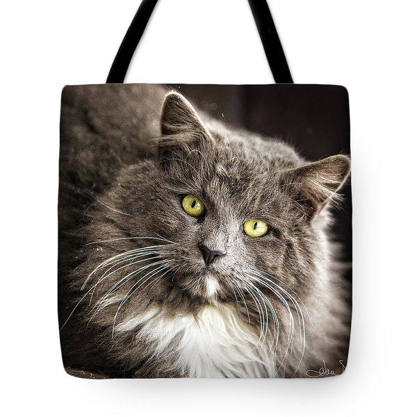 Hairy Ears Tote Bag