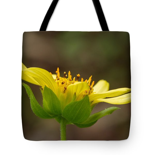 Tote Bag featuring the photograph Hairy Leafcup by Paul Rebmann