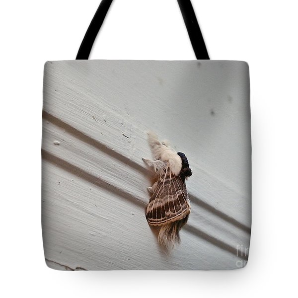 Hairy Russian Moth Tote Bag