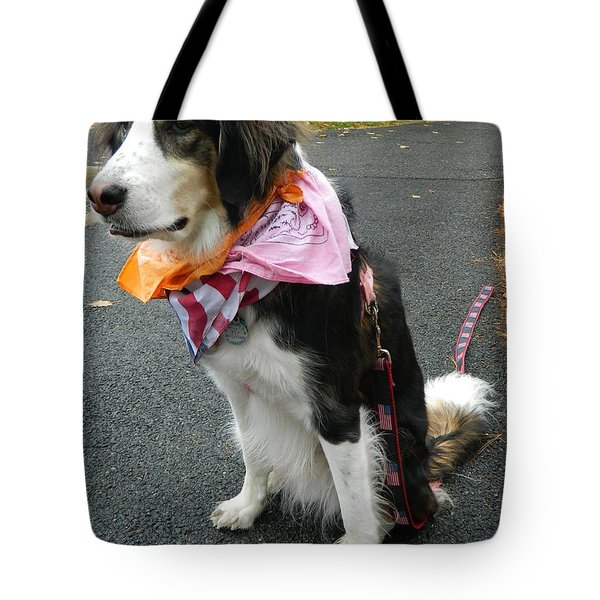 Tote Bag featuring the photograph Haley The Wonder Dog by Emmy Marie Vickers