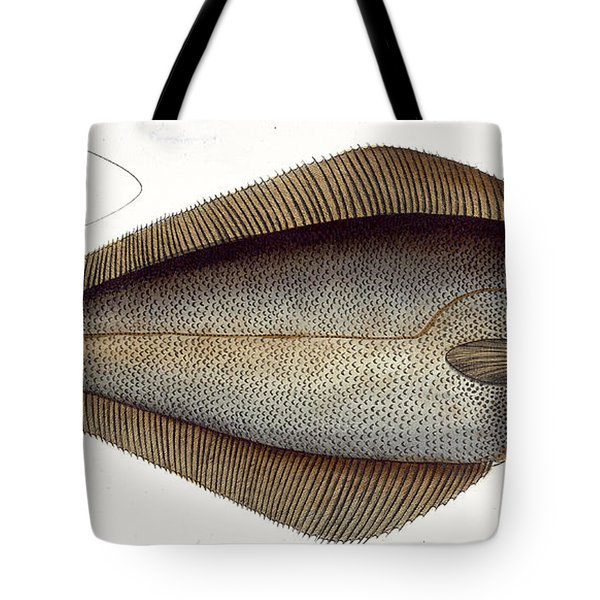 Halibut Tote Bag by Andreas Ludwig Kruger