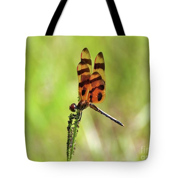 Halloween Pennant Tote Bag by Al Powell Photography USA