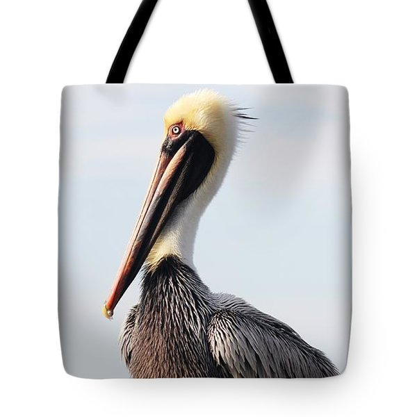 Handsome Brown Pelican Tote Bag by Carol Groenen