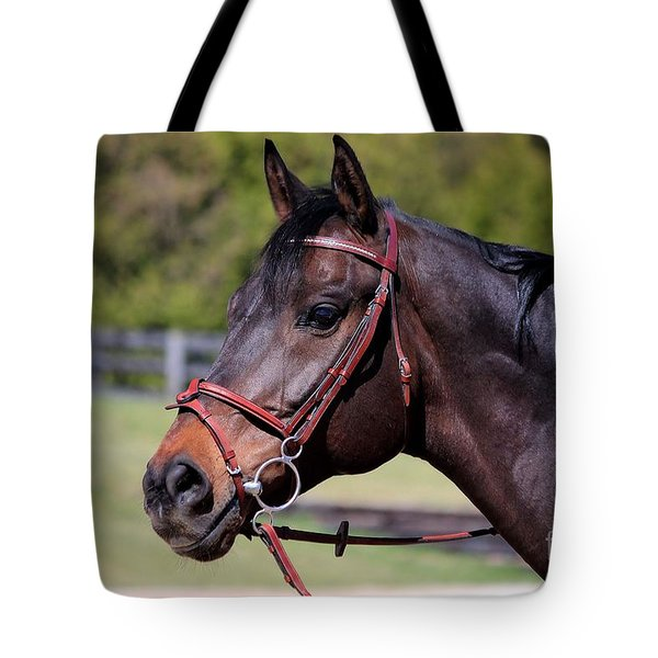 Handsome Gelding Tote Bag