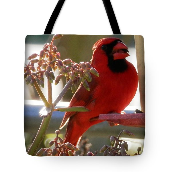 Handsome Red Male Cardinal Visiting Tote Bag