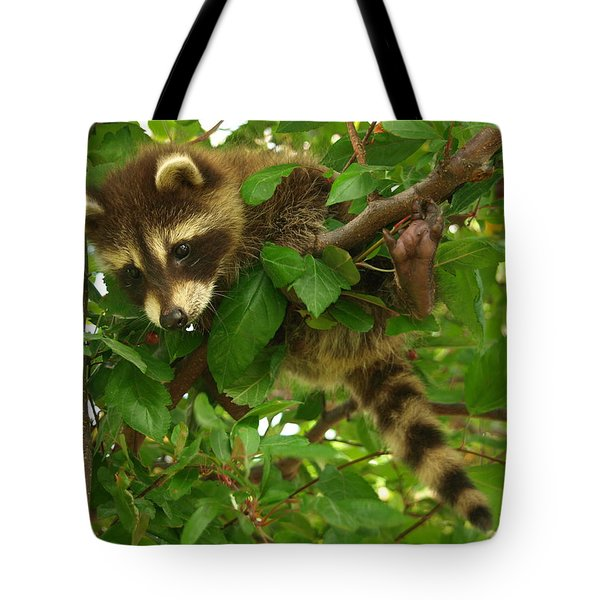 Tote Bag featuring the photograph Hang In There by James Peterson