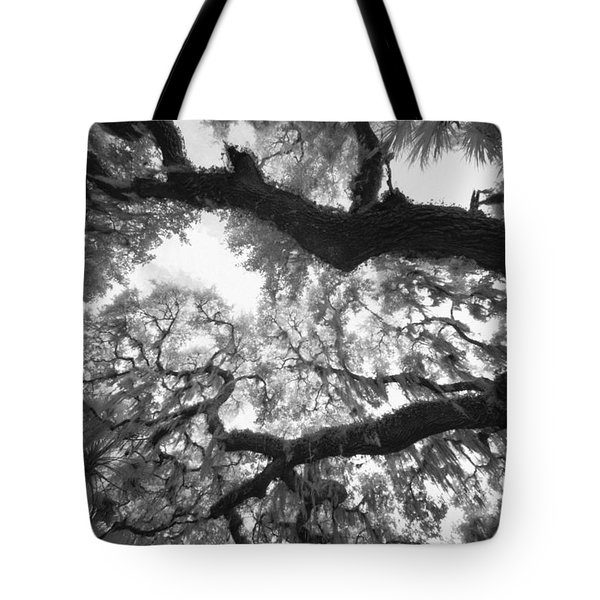 Hanging Moss Tote Bag by Bradley R Youngberg
