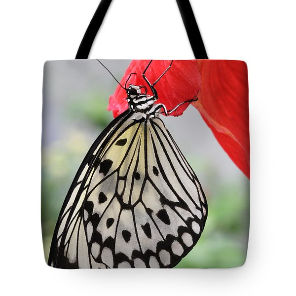 Tote Bag featuring the photograph Hanging On #2 by Judy Whitton
