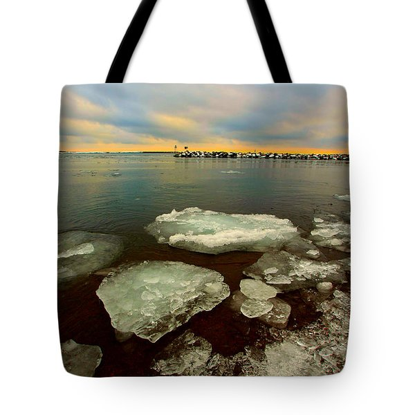 Tote Bag featuring the photograph Hanging On by Amanda Stadther