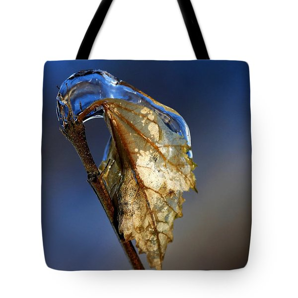 Tote Bag featuring the photograph The Last Leaf  by Debbie Oppermann