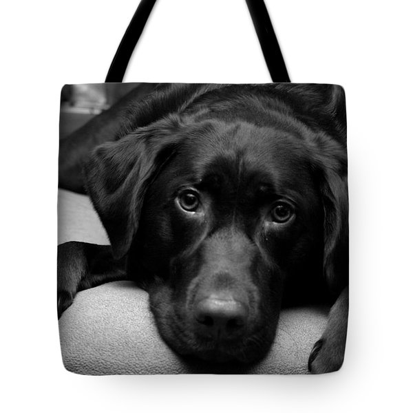 Hank Tote Bag by Meaghan Troup