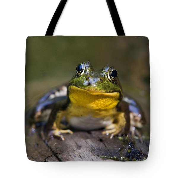 Happiness Frog Tote Bag by Christina Rollo