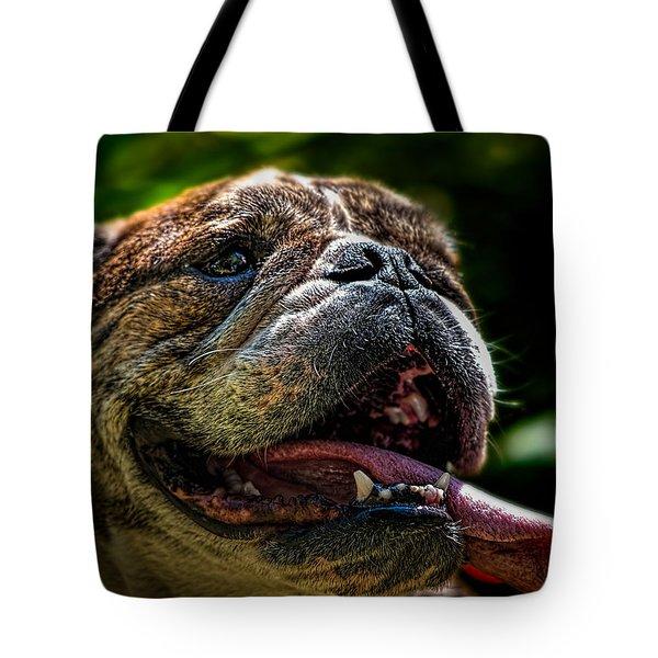 Happy Dog Tote Bag by Bob Orsillo