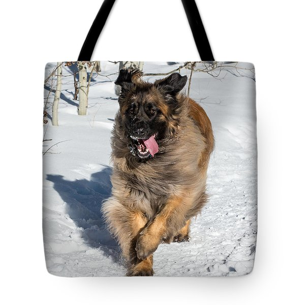 Happy Leonberger Winter Trail Running Tote Bag