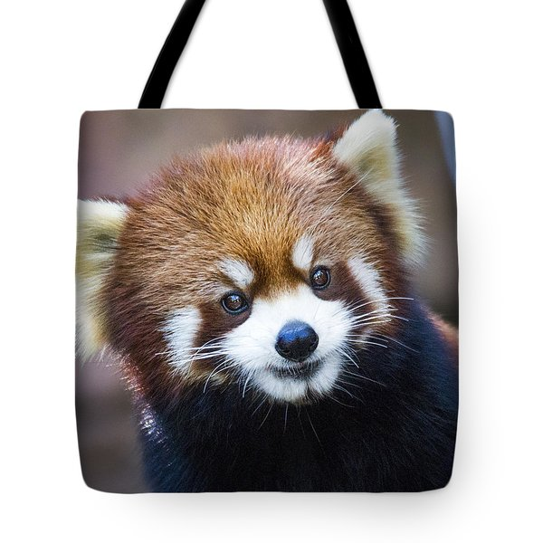 Happy Red Panda Tote Bag by Jaki Miller