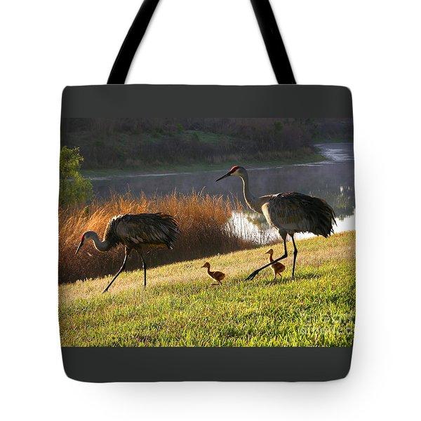 Happy Sandhill Crane Family Tote Bag by Carol Groenen