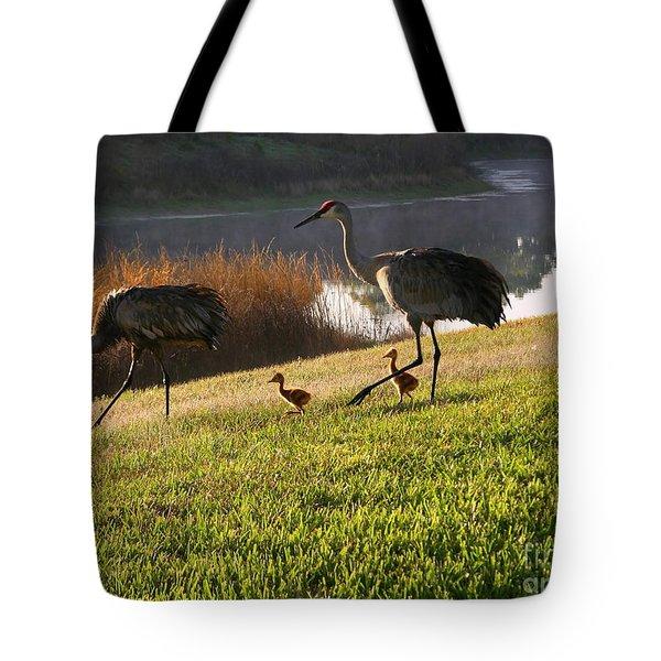 Happy Sandhill Crane Family - Original Tote Bag by Carol Groenen