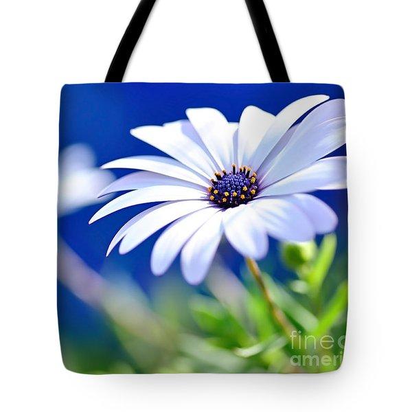 Happy White Daisy 2- Blue Bokeh  Tote Bag by Kaye Menner