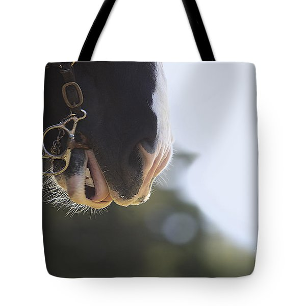 Hard Work Plowing Tote Bag by Rich Collins