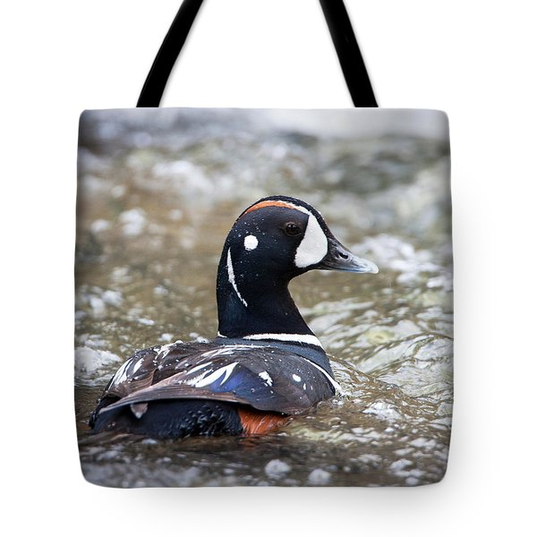 Harlequin Duck In Rapids Tote Bag by Jack Bell