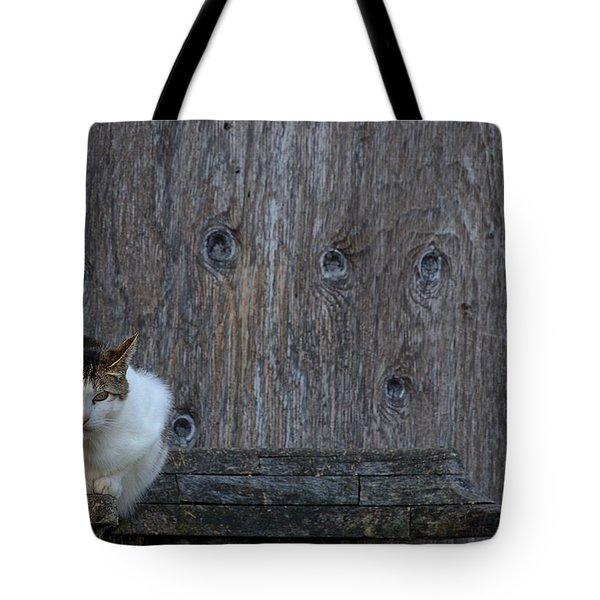 Harlequin Rustic Tote Bag