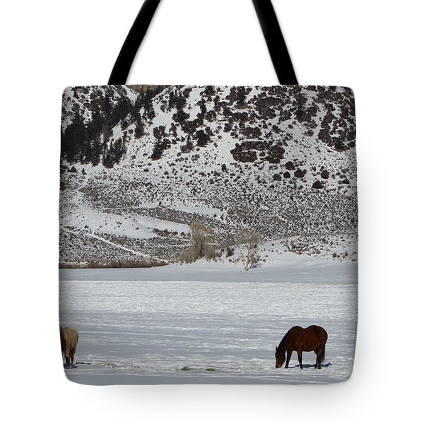 Tote Bag featuring the photograph Harmony by Fiona Kennard