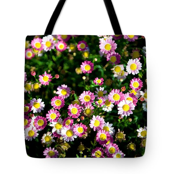 Tote Bag featuring the photograph Harmony by Yew Kwang