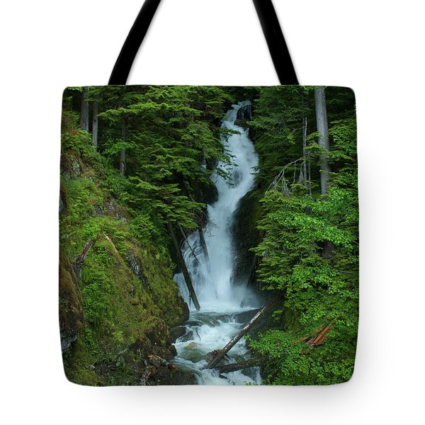 Tote Bag featuring the photograph Harrison Lake Road Falls by Rod Wiens