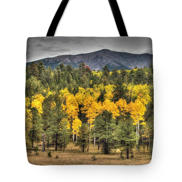 Hart Prairie Tote Bag