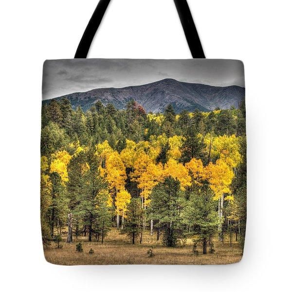 Hart Prairie Tote Bag by Tam Ryan