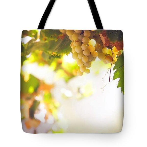 Harvest Time. Sunny Grapes I Tote Bag by Jenny Rainbow