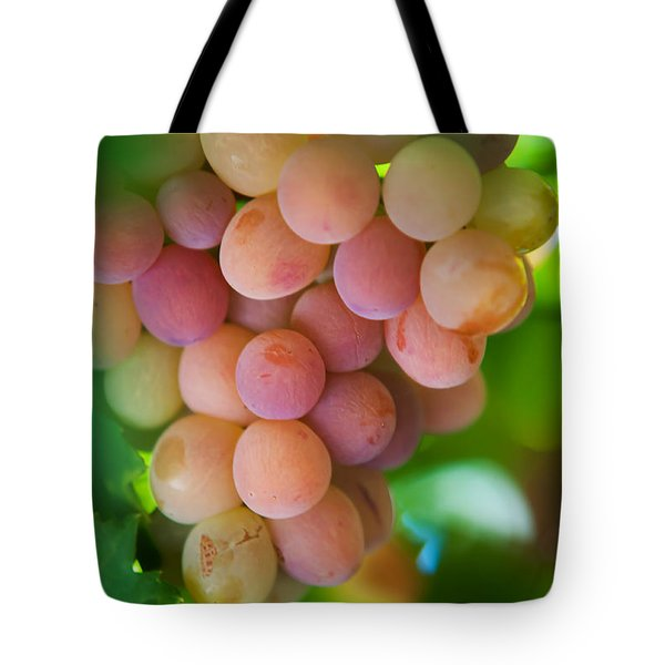 Harvest Time. Sunny Grapes Tote Bag by Jenny Rainbow