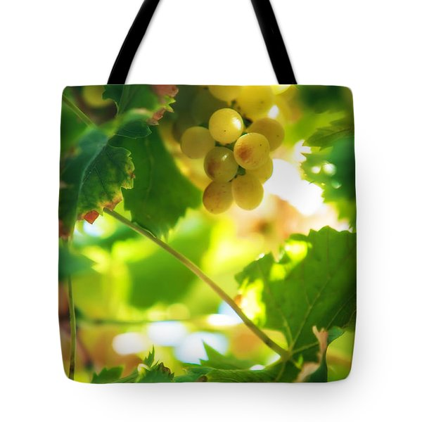 Harvest Time. Sunny Grapes Vii Tote Bag by Jenny Rainbow