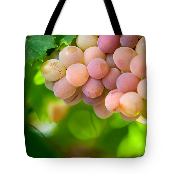 Harvest Time. Sunny Grapes Viii Tote Bag by Jenny Rainbow