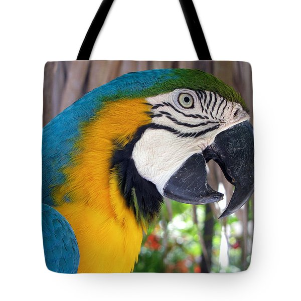 Harvey The Parrot 2 Tote Bag