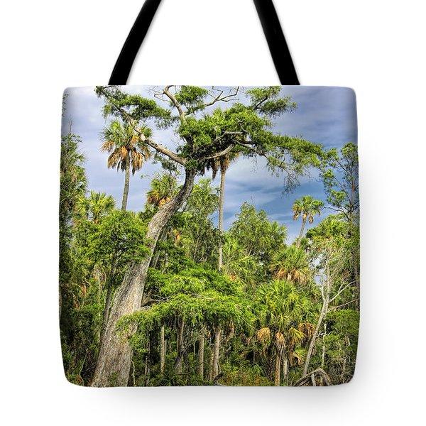 Hatrack Cypress Tote Bag