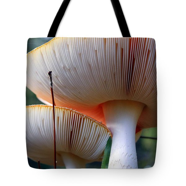 Hats On Tote Bag