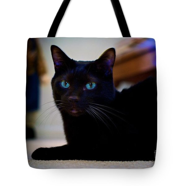 Havana Brown Cat Tote Bag