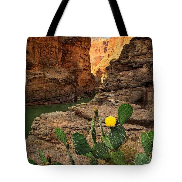 Havasu Cactus Tote Bag
