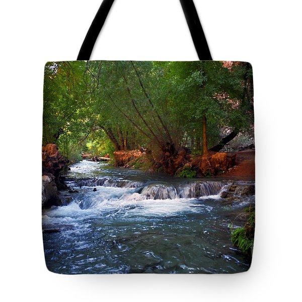 Havasu Creek Tote Bag by Kathy McClure