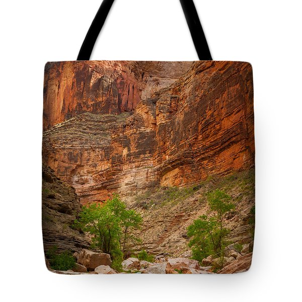 Havasu Creek Number 3 Tote Bag