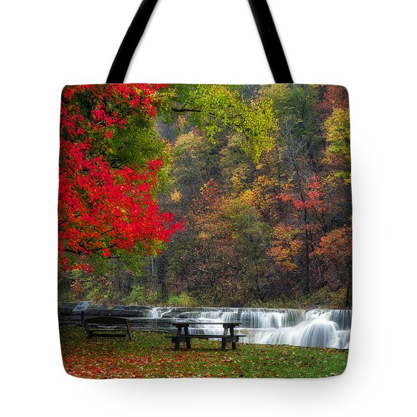 Have A Seat Tote Bag by Mark Papke