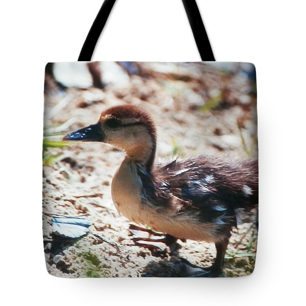 Tote Bag featuring the photograph Lost Baby Duckling by Belinda Lee