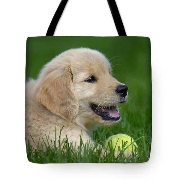 Having A Ball Tote Bag