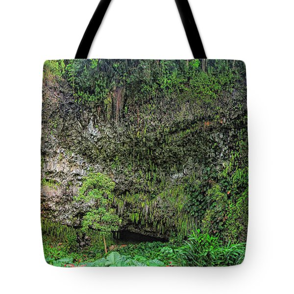 Hawaii Fern Grotto Tote Bag by C H Apperson