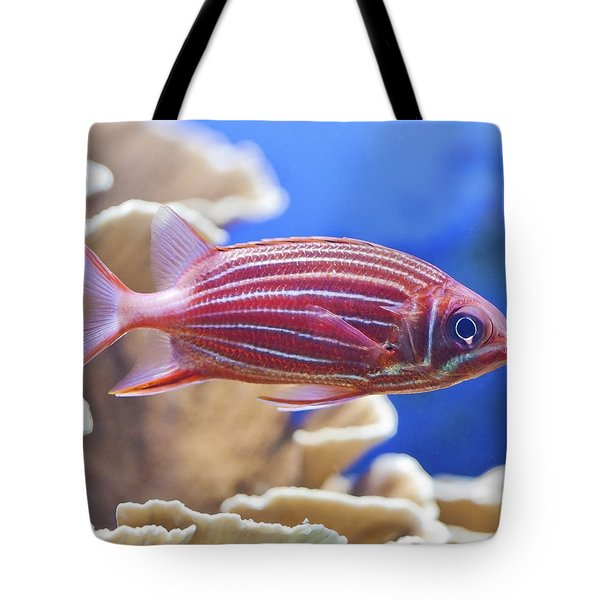 Hawaiian Squirrelfish Tote Bag
